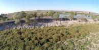 Papuçdere Barajı Sıfırlandı