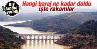 İstanbulun barajlarının yarısı doldu