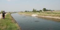 Suriyeli Çoban Sulama Kanalında Boğuldu