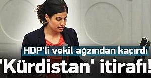HDP'li vekilden 'Kürdistan' itirafı