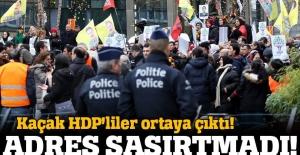 Kaçak HDP'liler Brüksel'de mitingde!