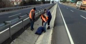 Lastiği patlayan otomobil takla attı: 1 ölü, 2 yaralı