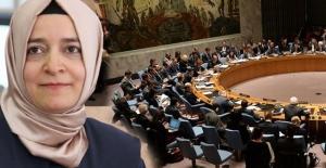 Bakan Kaya, Hollanda'daki skandalı BM'de anlatacak