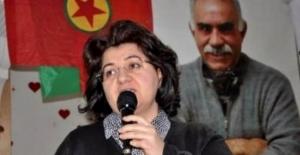 Emine Ayna Diyarbakır'da gözaltına alındı