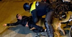 Hollanda polisinin saldırdığı Türk bakın kim çıktı