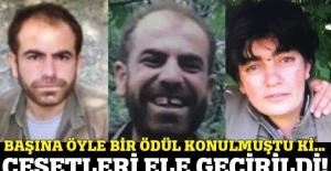 Nusaybin'de PKK'lı terörist 'Soro' öldürüldü