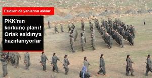 PKK, Ezidilerle Irak'ta Ortak Saldırıya Hazırlanıyor