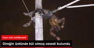 Telleri Kesmek İsterken Elektrik Direğinde Yanarak Öldü