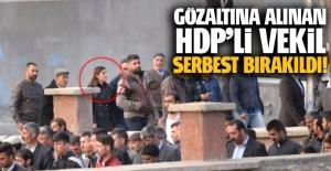 Muş'ta gözaltına alınan HDP'li vekil Taşdemir serbest bırakıldı