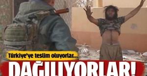 Terör örgütü dağılıyor! Teröristler Türkiye'ye teslim oluyor...