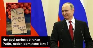 Putin, Rusya'nın Domatese Uyguladığı Ambargoyu Neden Kaldırmadığını Açıkladı