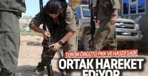 Terör örgütü PKK, Haşdi Şabi'ye koridor mu açıyor?