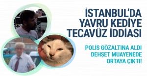 İstanbul'da tüyler ürperten tecavüz iddiası