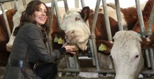 Devlet desteğiyle tesis kurdu günlük 5 ton süt üretiyor