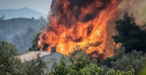 Yunanistan yangını 3 gündür söndürülemiyor