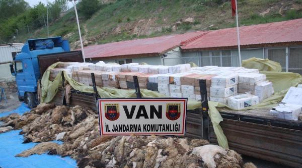 Tır'daki Koyun Postları Altından 119 Bin Kaçak Sigara Çikti