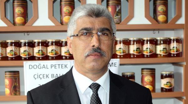 Tokat'ta Bal Hasadında Büyük Düşüş Bekleniyor