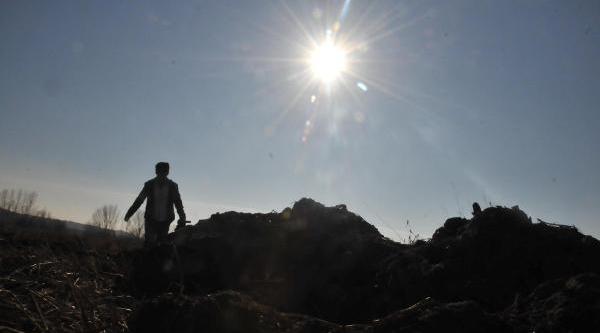 Trakya'da Kuraklik Tehlikesi Çiftçiyi Tedirgin Ediyor
