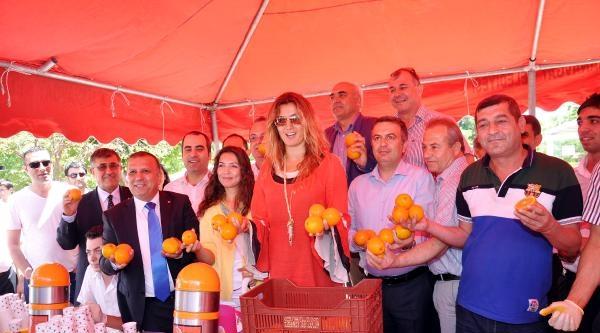 Tuğba Özay, Tanıtım İçin Manavgat Portakalı Ve Suyu Dağıttı