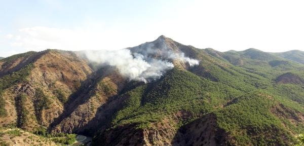 Tunceli'de Orman Yangını