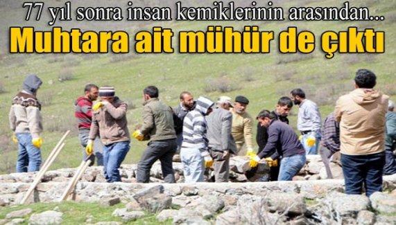 Tunceli'deki kazılarda 10 insan kafatası bulundu
