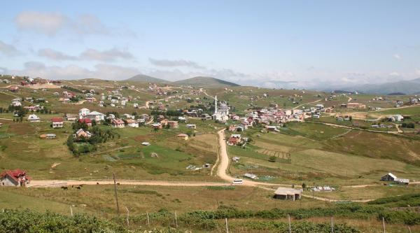 Turistler İçin Yaylada Çilek Yetiştiriyorlar