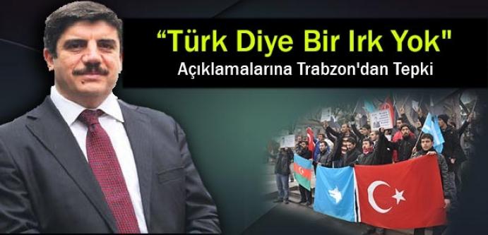 """""""Türk Diye Bir Irk Yok"""