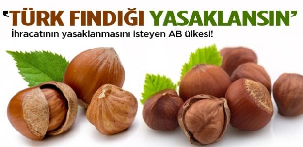 Türk fındığına yasak isteyen ülke!