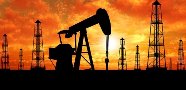 Türkiye için kritik petrol açıklaması...