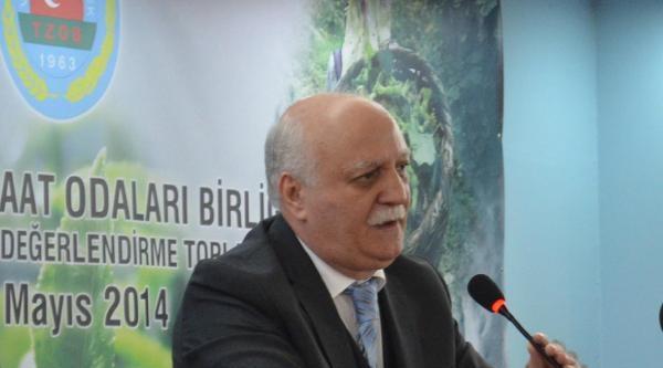 Tzob Genel Başkanı Bayraktar: İthalat Lobileri Hortladı