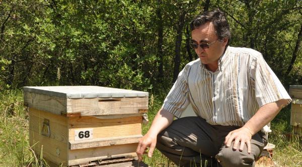 Uludağ Üniversitesi'nden Organik Bal Ormanı Projesi