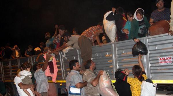 Uludere'den Türkiye Gelen Ezidilerin Sayısı 10 Bine Ulaştı