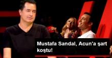 Mustafa Sandal: O Ses Türkiye'de Yer Alırım Ancak All Star Tadında Olursa