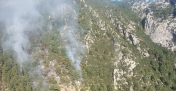 Antalya'da orman yakan Rus turistler tutuklandı