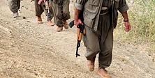 Şırnak'ta 8 PKK'lı teslim oldu!