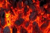 Türkiye Yerli Kömürle Güçlenecek