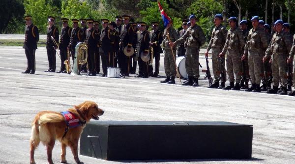 Van Ve Bitlis'te Jandarma'nın Kuruluş Yıl Dönümü Kutlandı