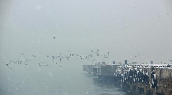 Van'da Kar Yağışı - Ek Fotoğraf