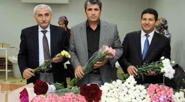 Van'daki Öğretmenlere 12 Bin Karanfil, 2 Bin Gül