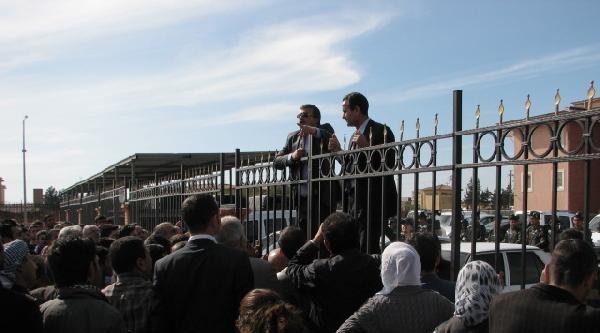 Viranşehir'de Çöplükte Yakılmış Oy Pusulaları Bulundu (2)