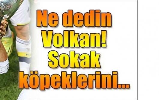 Volkan Demirel'den Melo'ya: Belediye köpekleri zehirlesin...