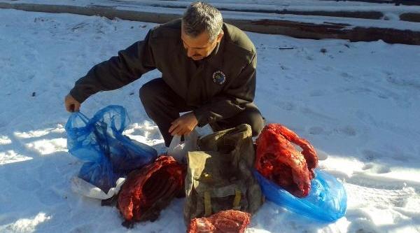 Yaban Keçisi Vuran Avciya Para Cezasi Kesildi
