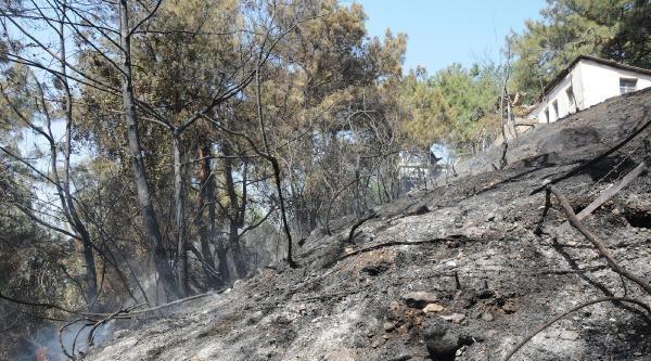Yangına Hortumla Su Sıkarak Müdahale Ettiler