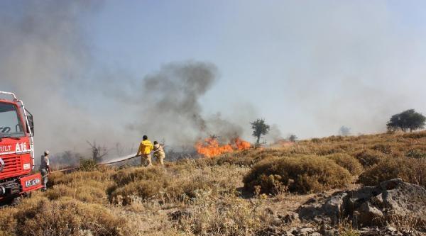 Yangında 15 Hektarlık Makilik Alan Zarar Gördü