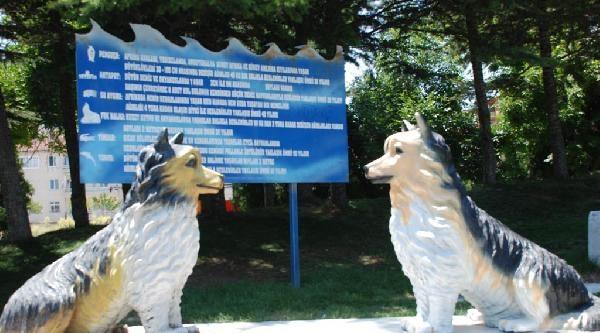 Yapay Hayvanat Bahçesine Yoğun İlgi