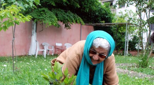 Yaşlılar, Konukevi Bahçesine Çiçek Dikti