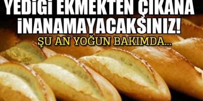 Yediği ekmeğin içinden çıkana inanamayacaksınız! Şu an yoğun bakımda...