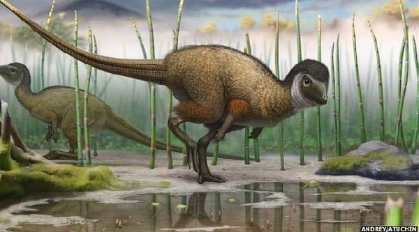 Yeni Keşif Bilim Dünyasını Sarstı: Tüylü Dinozorlar
