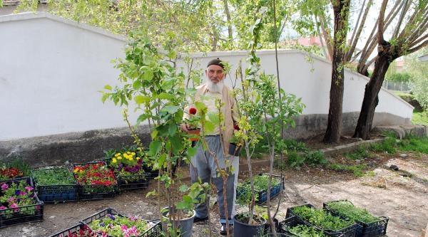 Yeşile Ve Torunlarının Eğitimine Katkı Sağlıyor