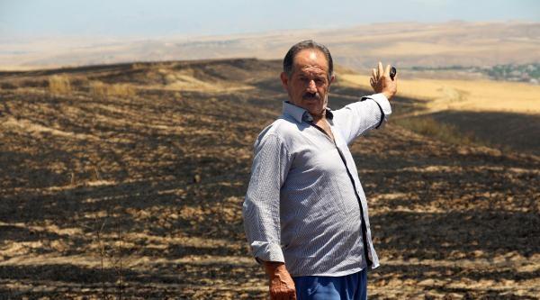 Yıldırım Düştü, Bin Dönüm Buğday Ekili Alan Yandı
